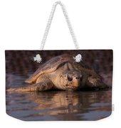 Beaufort The Turtle Weekender Tote Bag