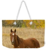 Beautiful Chestnut Horse Weekender Tote Bag