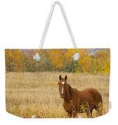 Beautiful Grazing Horse Weekender Tote Bag
