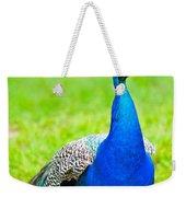 Beautiful And Pride Peacock On A Lawn Weekender Tote Bag