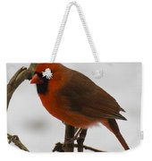 Beautiful Cardinal Weekender Tote Bag