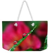 Beauty After The Rain Weekender Tote Bag