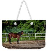 Beauty Of A Horse Weekender Tote Bag