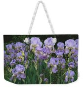 Bed Of Irises, Provence Region, France Weekender Tote Bag