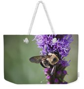 Bee On Gayfeather Squared 1 Weekender Tote Bag