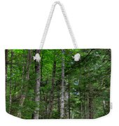 Beech Mountain Trail Acadia Weekender Tote Bag