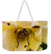 Beetle In Yellow Flower Weekender Tote Bag