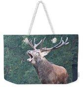 Bellowing Red Deer Stag Weekender Tote Bag