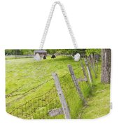 Belted Galloway Cows Farm Rockport Maine Weekender Tote Bag