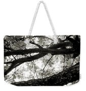 Beneath The Old Apple Tree Weekender Tote Bag