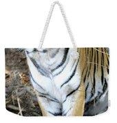 Bengal Tiger In Pench National Park Weekender Tote Bag