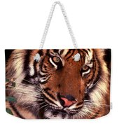 Bengal Tiger In Thought Weekender Tote Bag