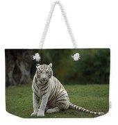 Bengal Tiger Panthera Tigris Tigris Weekender Tote Bag by Konrad Wothe