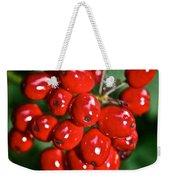 Berry Brilliant Weekender Tote Bag
