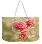 Berry Good Weekender Tote Bag by Kim Hojnacki