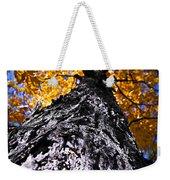 Big Autumn Tree In Fall Park Weekender Tote Bag