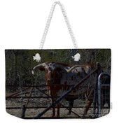 Big Bull Long Horn Weekender Tote Bag