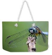 Big Eyes Blue Dragonfly Weekender Tote Bag