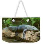 Big Gator On A Log Weekender Tote Bag