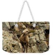 Big Horn On The Rocks Weekender Tote Bag