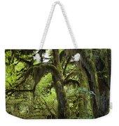 Bigleaf Maple Acer Macrophyllum Weekender Tote Bag