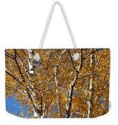 Birch Beauty Weekender Tote Bag