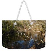 Birch Eye Weekender Tote Bag