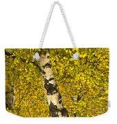 Birch Forest In Finland Weekender Tote Bag