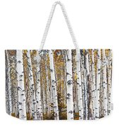 Birch Trees No.0644 Weekender Tote Bag