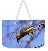 Bird - Cedar Waxwing - One At A Time Weekender Tote Bag
