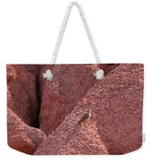 Bird And Sand Weekender Tote Bag