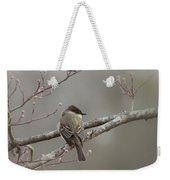 Bird - Eastern Phoebe - Very Contented Weekender Tote Bag