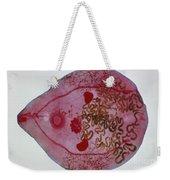 Bird Liver Fluke Lm Weekender Tote Bag
