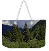 Bird Over Vail 1 Weekender Tote Bag
