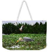 Birding Action At Circle B Bar Reserve Weekender Tote Bag