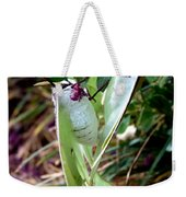 Birds And Bees And Luna Moths Weekender Tote Bag