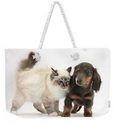 Birman Cat And Dachshund Puppy Weekender Tote Bag