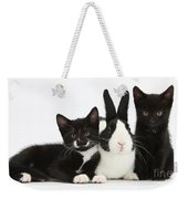 Black And Tuxedo Kittens With Dutch Weekender Tote Bag