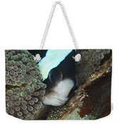 Black And White Anemone Fish Looking Weekender Tote Bag by Mathieu Meur