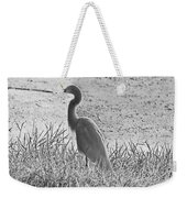 Black And White Egret  Weekender Tote Bag