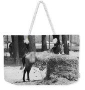 Black And White Hay Horse Weekender Tote Bag