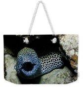 Black And White Honeycomb Moray Eel Weekender Tote Bag