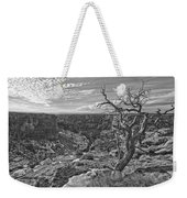 Black And White Image Of Tree Weekender Tote Bag