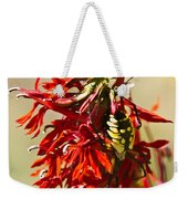 Black And Yellow Garden Spider 1 Weekender Tote Bag
