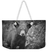 Black Bear Cub In A Pine Tree Weekender Tote Bag