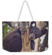 Black Bear Cub No 3224 Weekender Tote Bag