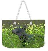 Black Bear In Green Weekender Tote Bag