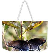 Black Beauty In The Bush Weekender Tote Bag