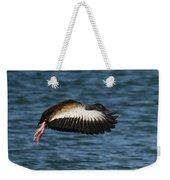 Black-belled Whistling-duck In Flight Weekender Tote Bag
