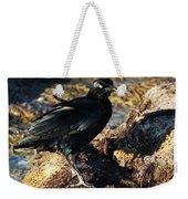 Black Bird With Yellow Eyes Weekender Tote Bag